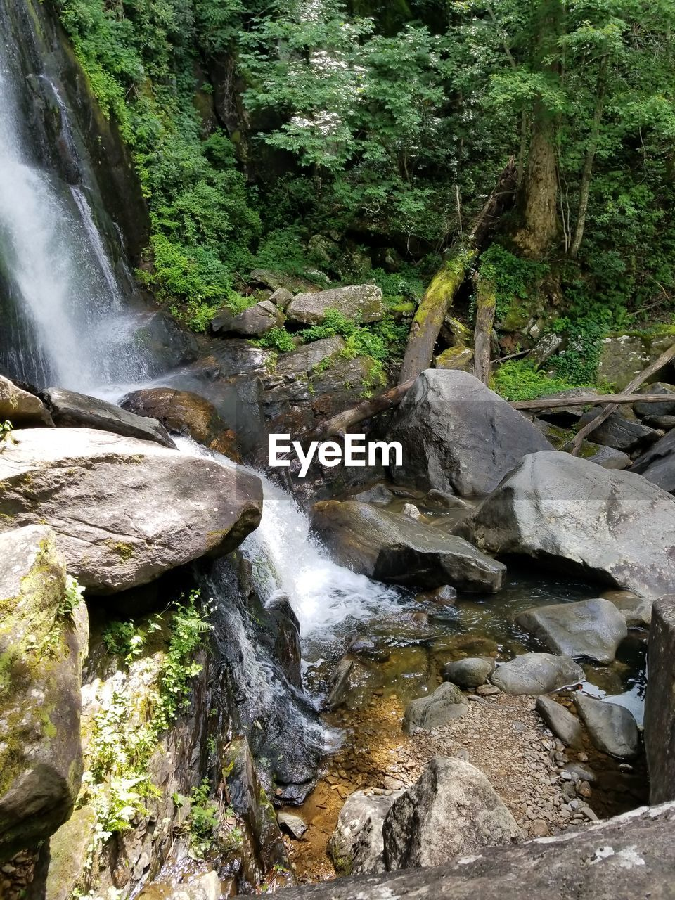 waterfall, flowing water, motion, nature, water, long exposure, forest, beauty in nature, river, rock - object, scenics, no people, tranquil scene, outdoors, blurred motion, tree, rapid, day, tranquility