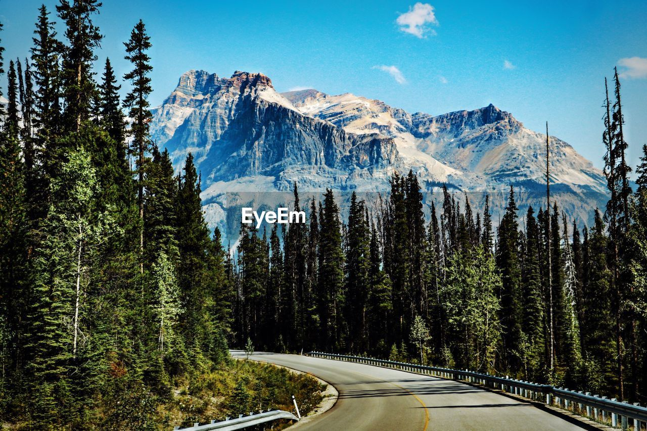 mountain, transportation, tree, scenics - nature, road, beauty in nature, sky, plant, nature, no people, tranquil scene, tranquility, mountain range, environment, day, non-urban scene, forest, growth, landscape, travel, outdoors, snowcapped mountain, crash barrier, pine tree, formation