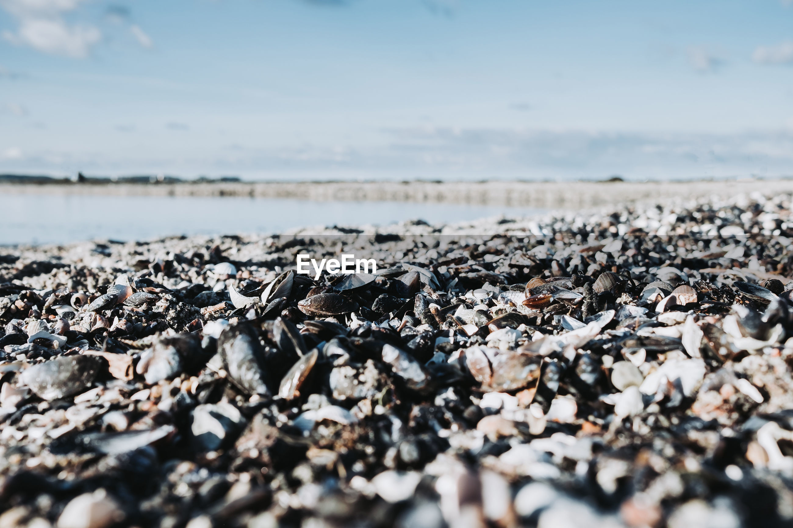 CLOSE-UP OF PEBBLES ON SHORE