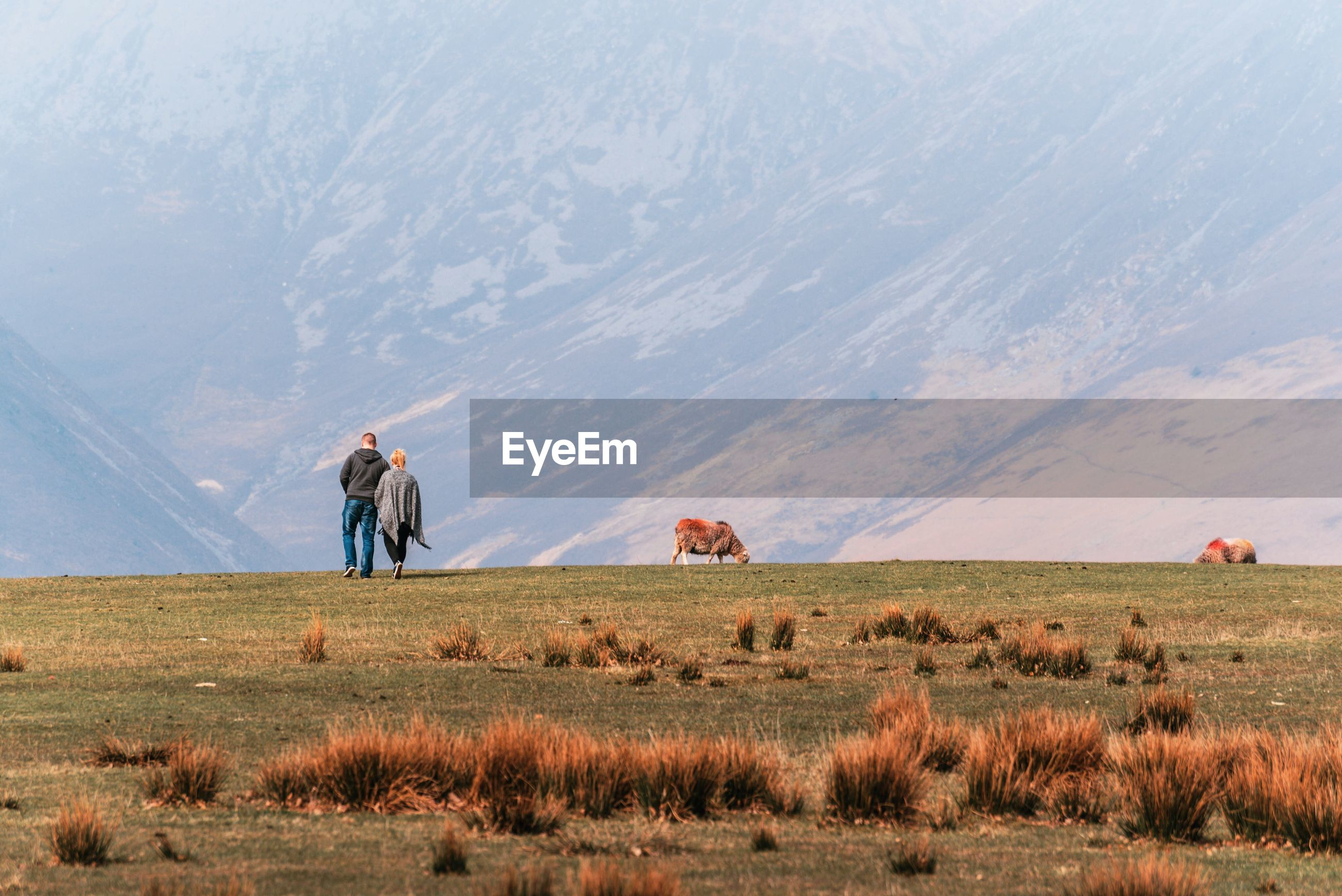 Rear view of couple walking on field against mountain