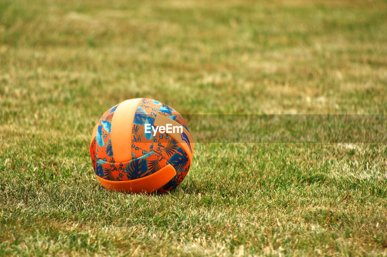 Ball in a meadow