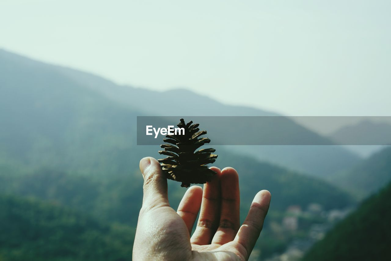 human hand, hand, human body part, one person, mountain, nature, holding, personal perspective, human finger, finger, real people, unrecognizable person, body part, beauty in nature, focus on foreground, scenics - nature, day, lifestyles, mountain range, plant, outdoors, human limb