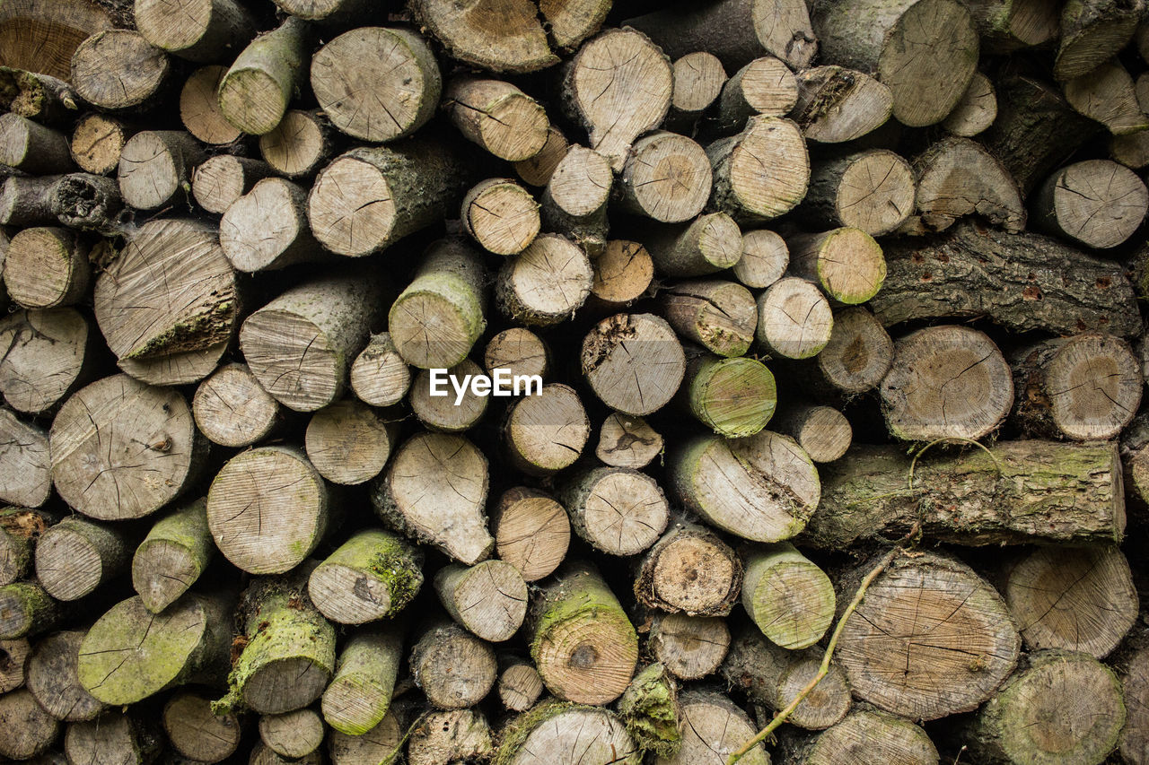 log, full frame, backgrounds, wood, large group of objects, timber, firewood, stack, wood - material, abundance, tree, lumber industry, forest, no people, deforestation, nature, heap, pattern, environmental issues, textured, woodpile, outdoors, chopped