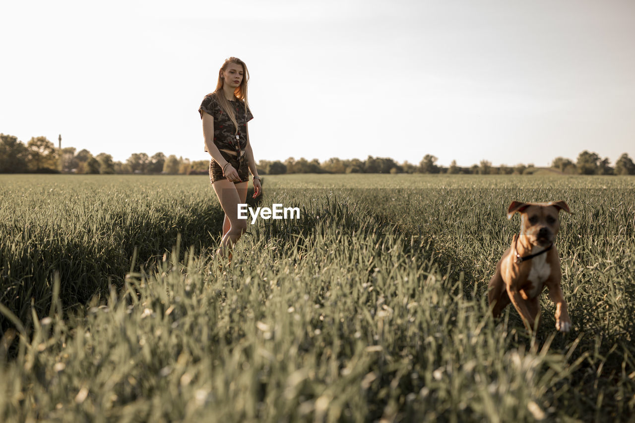 Young Woman With Dog On Agricultural Field