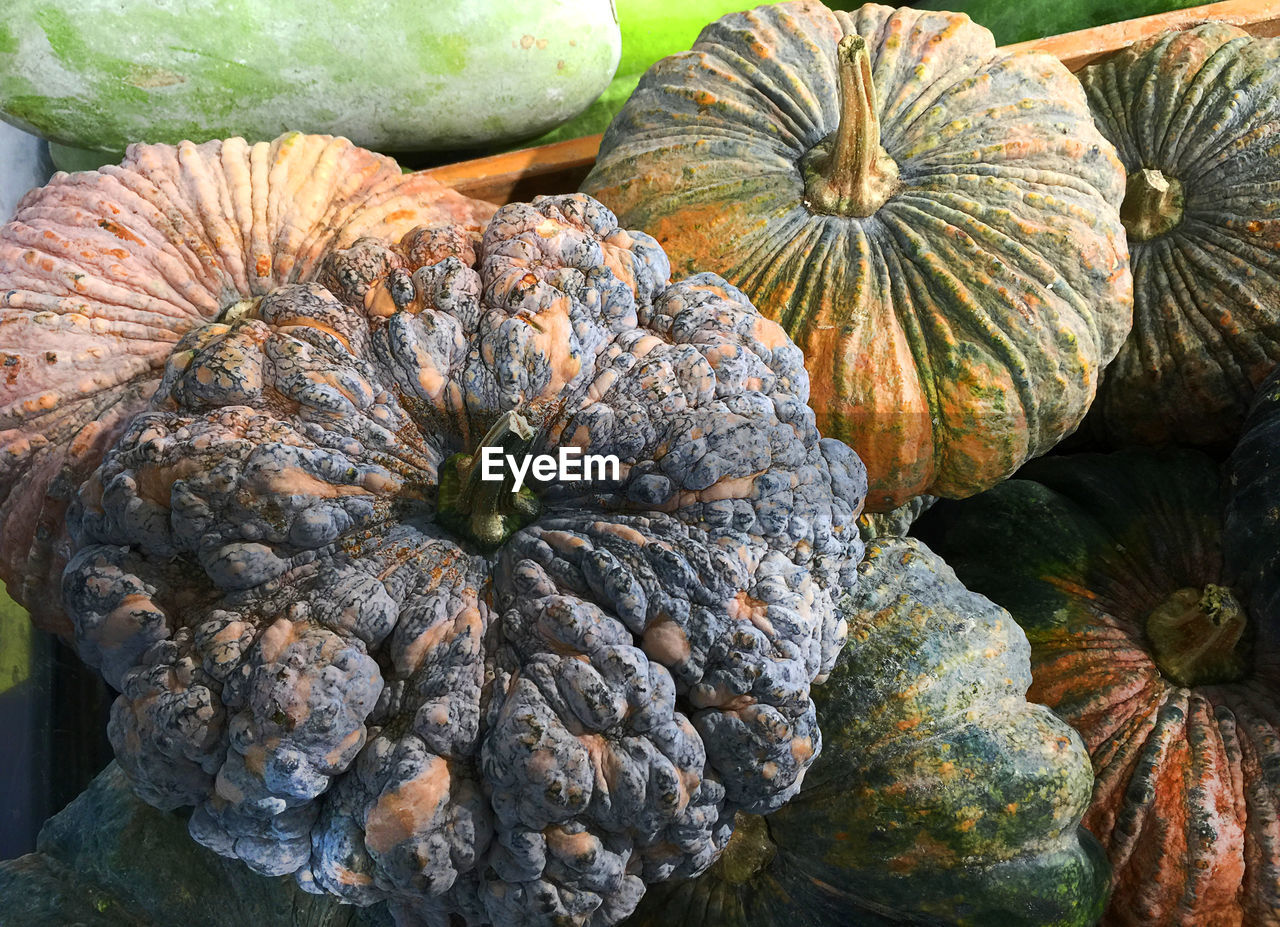 pumpkin, no people, nature, day, autumn, food, freshness, outdoors, beauty in nature, close-up