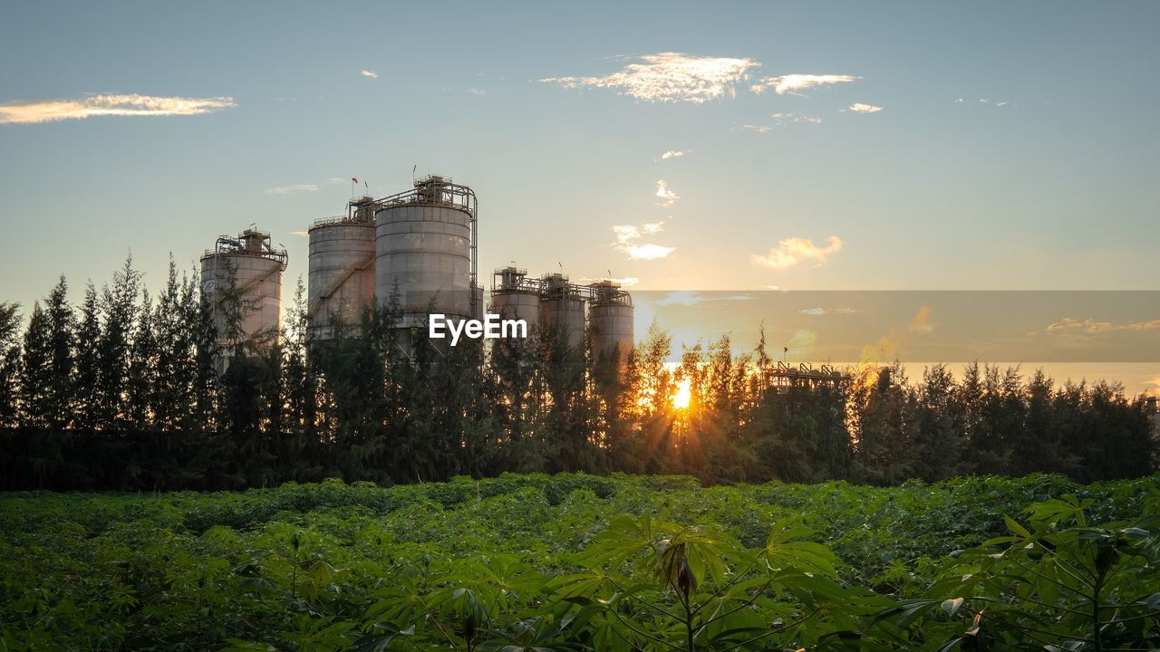 Storage tanks by trees against sky during sunset