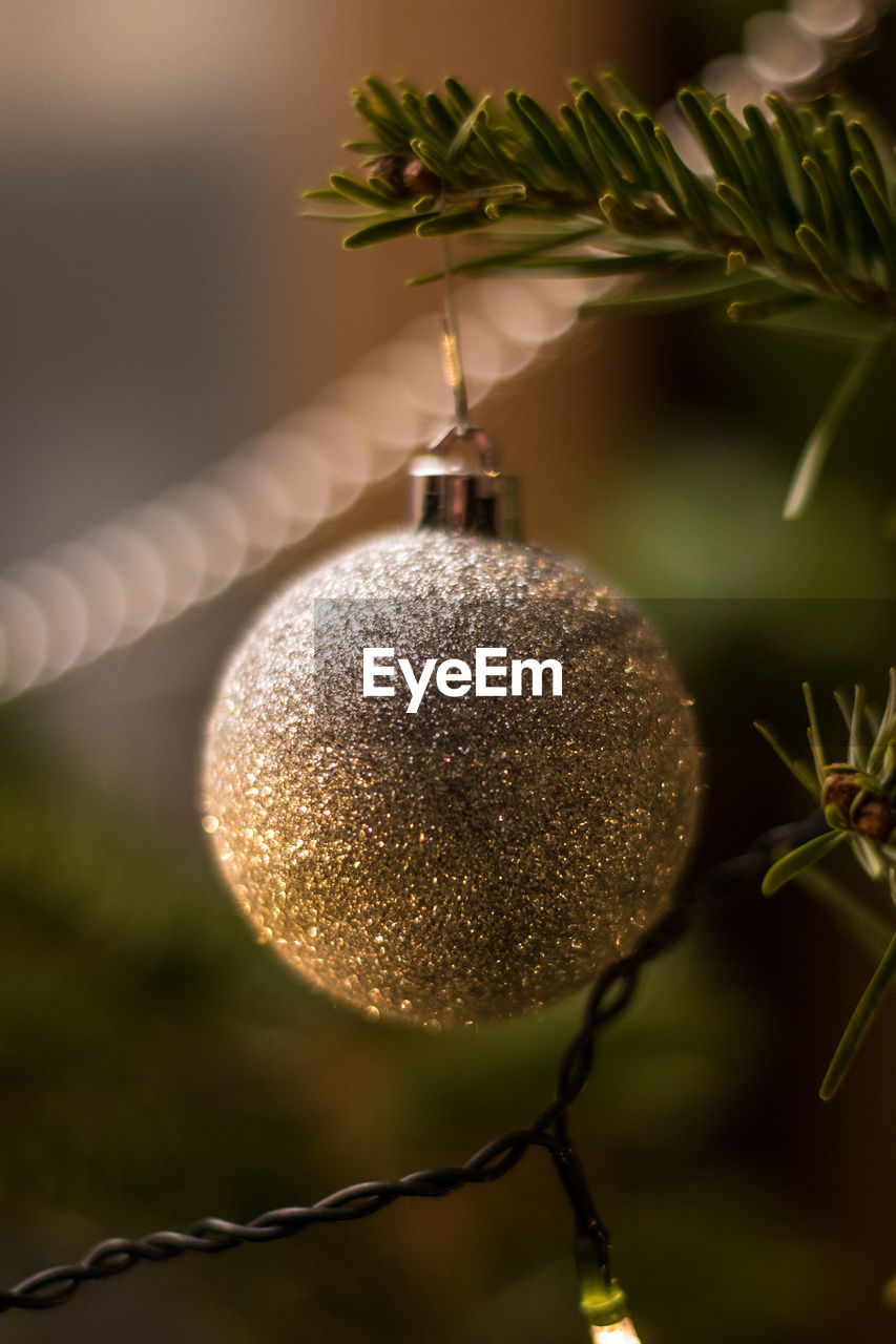 close-up, christmas decoration, plant, focus on foreground, hanging, christmas, decoration, no people, christmas ornament, nature, holiday, tree, healthy eating, selective focus, sphere, food and drink, growth, celebration, fruit, food, outdoors