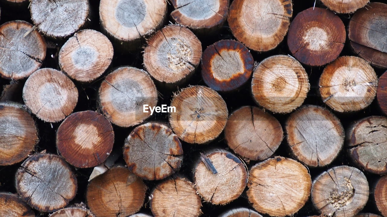 large group of objects, full frame, timber, backgrounds, stack, wood, forest, lumber industry, log, firewood, wood - material, tree, abundance, deforestation, textured, nature, close-up, pattern, no people, heap, woodpile, outdoors