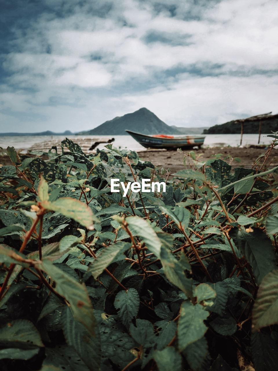 Beautiful taal volcano