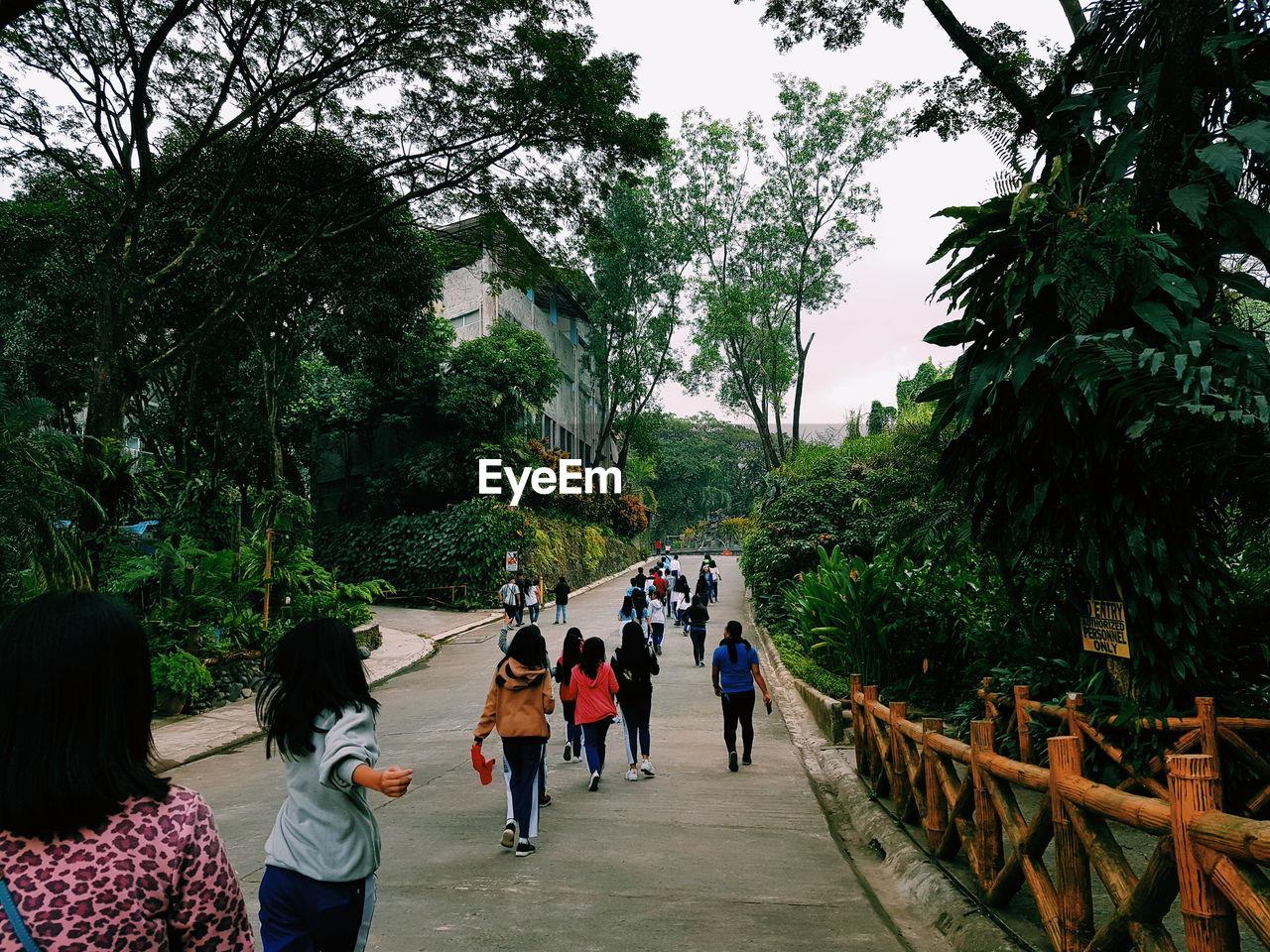 REAR VIEW OF PEOPLE WALKING ON FOOTPATH AMIDST PLANTS