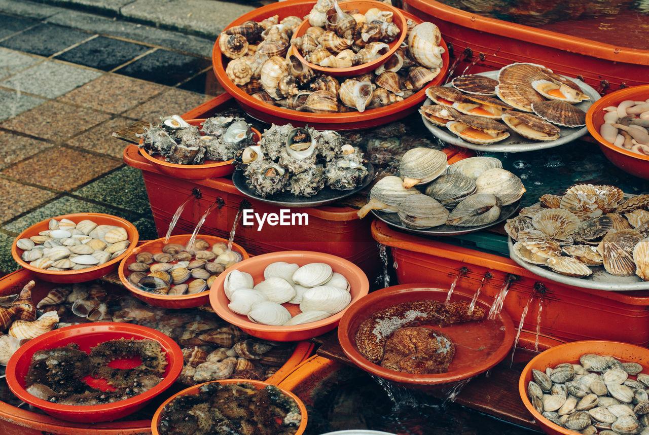 High angle view of seafood