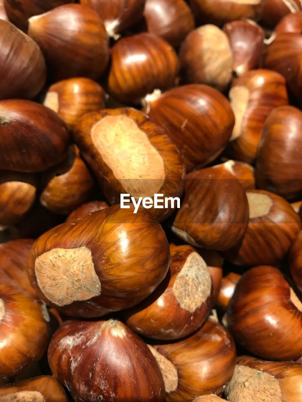 brown, chestnut - food, nut, nut - food, chestnut, still life, food, large group of objects, backgrounds, full frame, food and drink, abundance, wellbeing, freshness, close-up, no people, indoors, healthy eating, high angle view, hazelnut