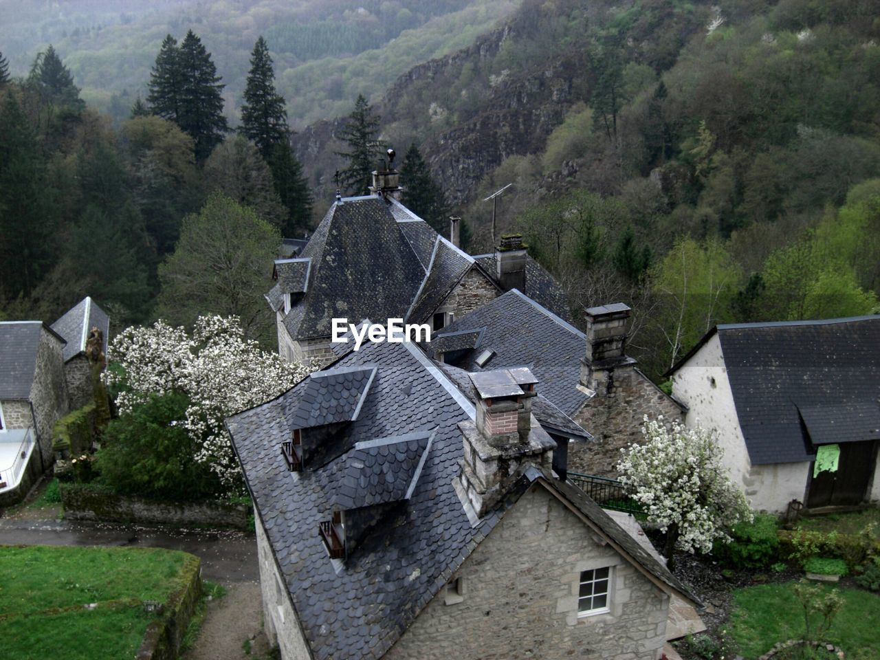 High angle view of houses against trees
