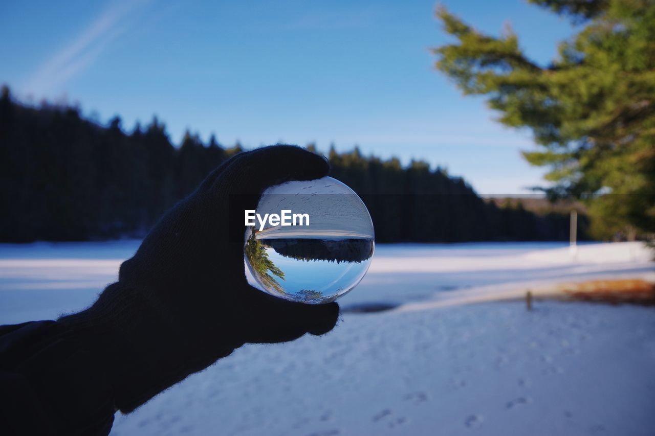 Close-up of hand holding crystal ball against trees in winter