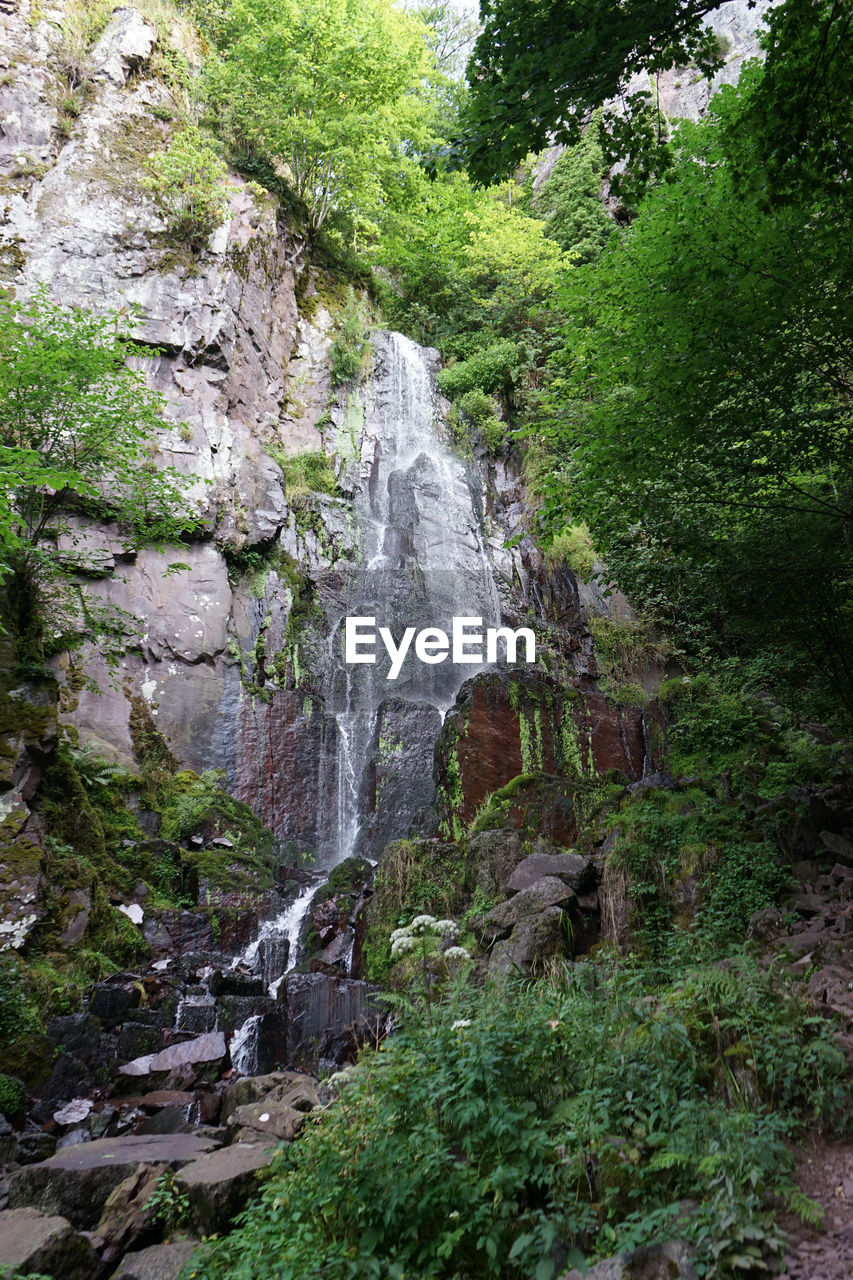 waterfall, rock - object, scenics, nature, day, forest, outdoors, water, tree, no people, beauty in nature, grass, sky