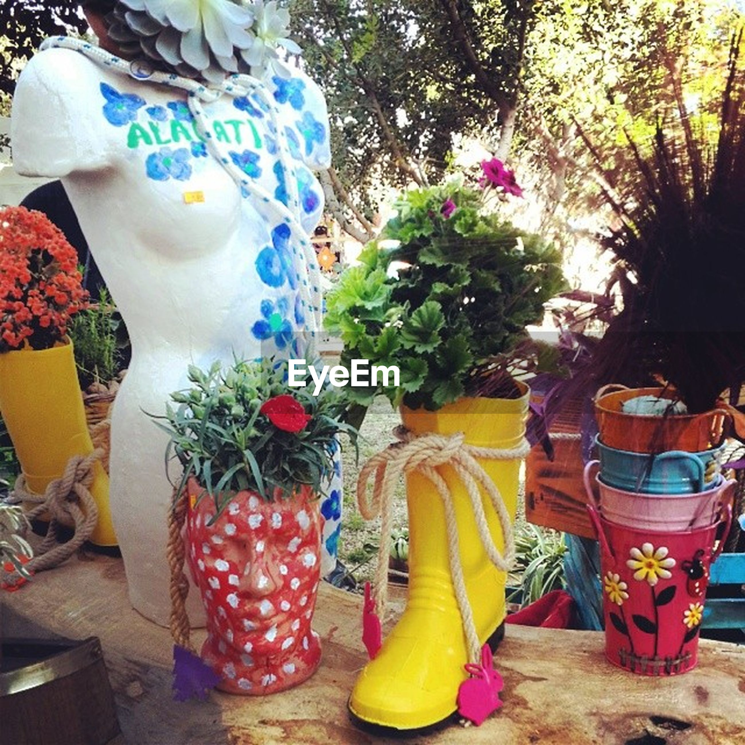 multi colored, flower, potted plant, variation, art and craft, art, decoration, creativity, retail, for sale, day, human representation, animal representation, freshness, yellow, vase, choice, outdoors, plant, celebration