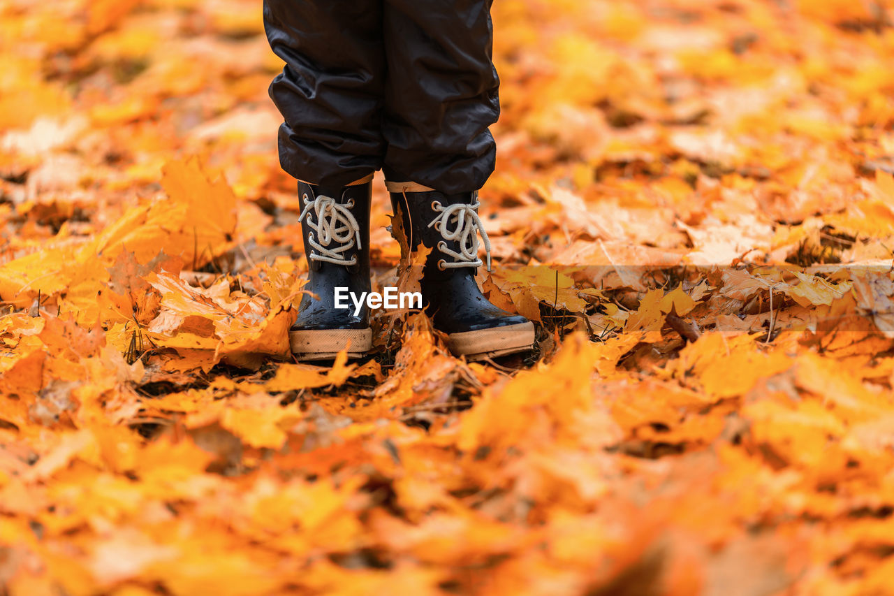 low section, autumn, shoe, real people, change, human leg, orange color, leaf, plant part, standing, one person, body part, leaves, selective focus, nature, leisure activity, day, lifestyles, human body part, men, outdoors, human foot, fall, leather, maple leaf