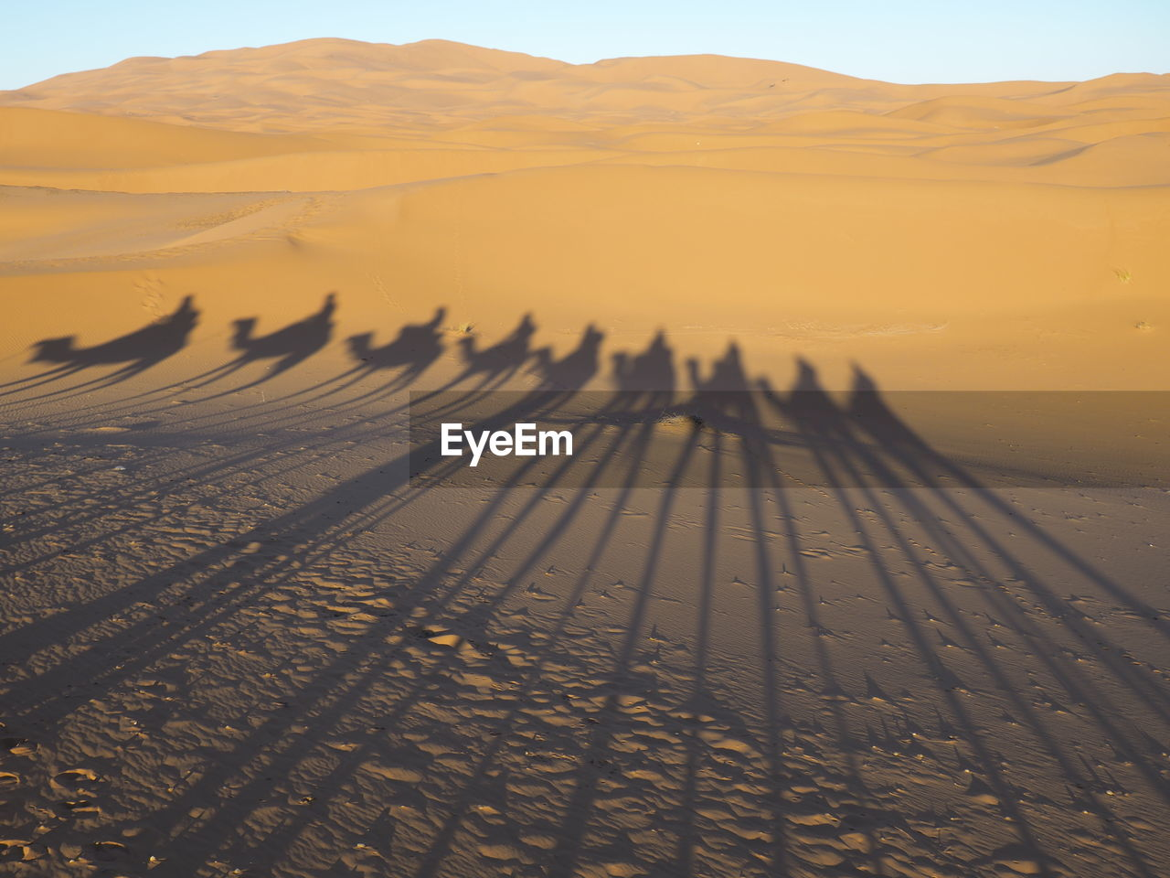 Shadow Of People Riding Camels At Desert