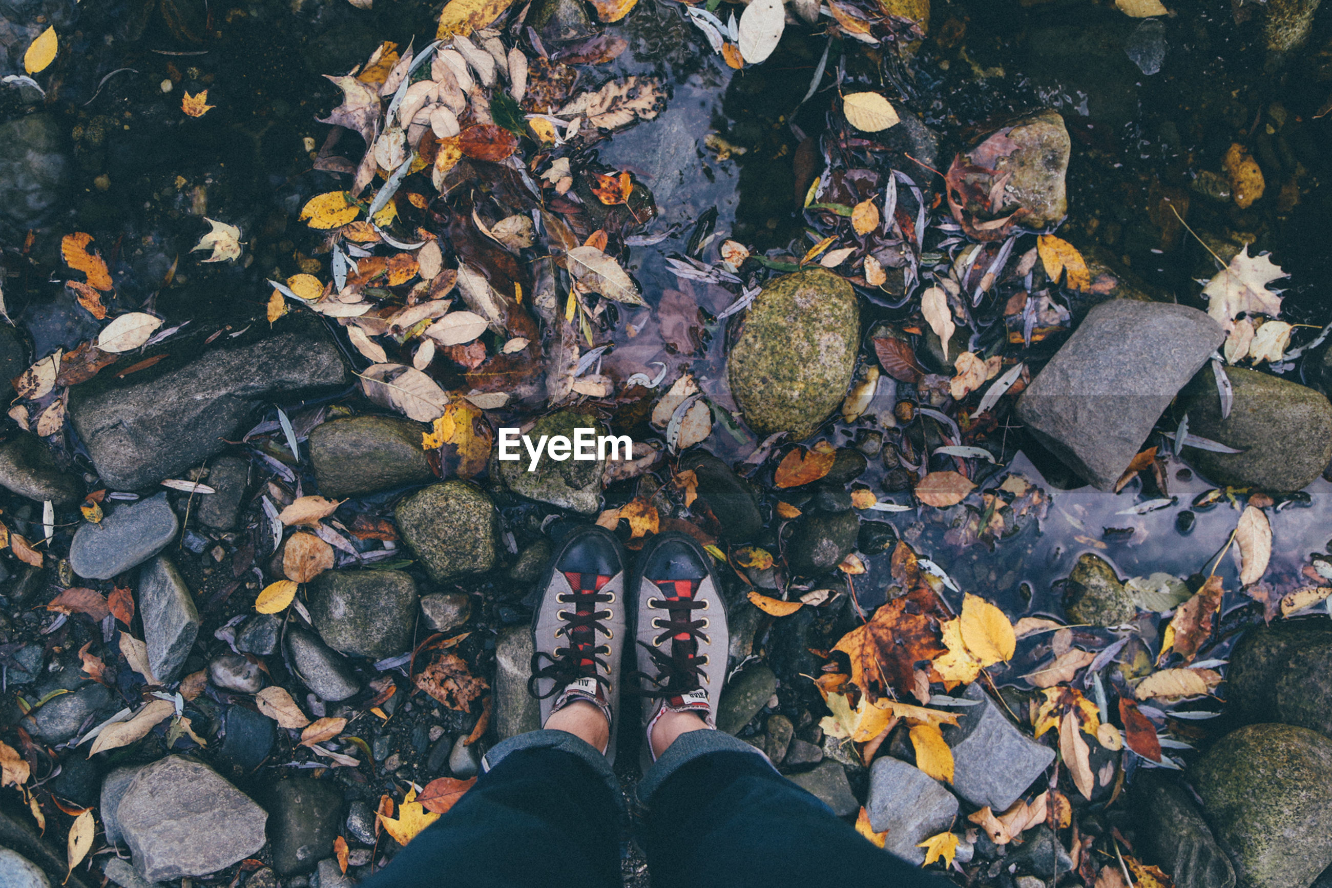 LOW SECTION OF WOMAN STANDING ON FALLEN AUTUMN LEAVES IN WATER