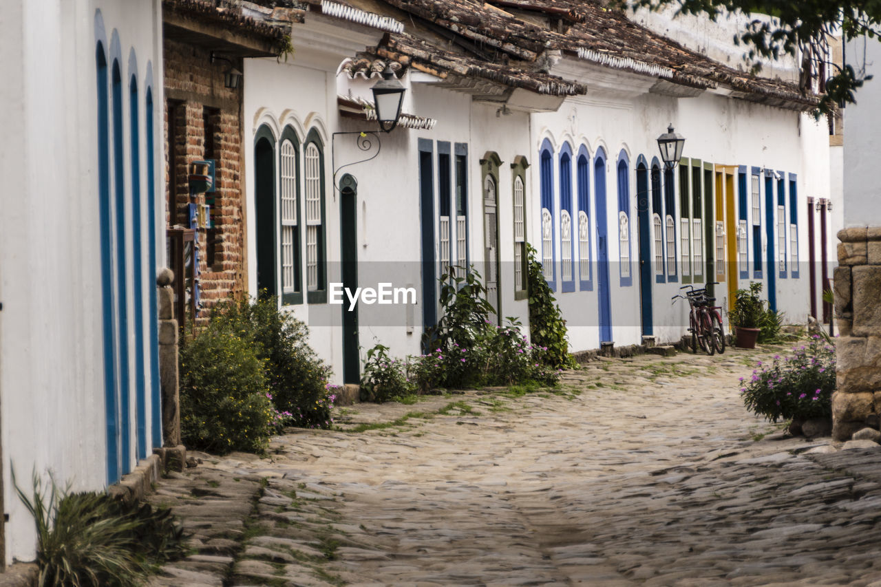 architecture, built structure, building exterior, building, plant, no people, the way forward, direction, nature, cobblestone, day, footpath, outdoors, street, growth, city, house, entrance, door, empty, alley