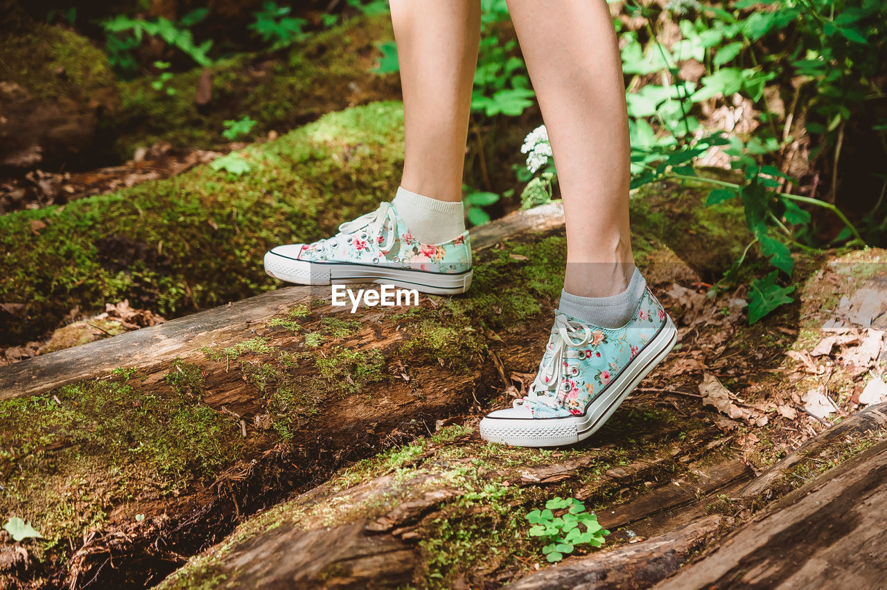 A girl in sneakers walks on logs in mosses across the stream. feet close-up take a step on a bridge