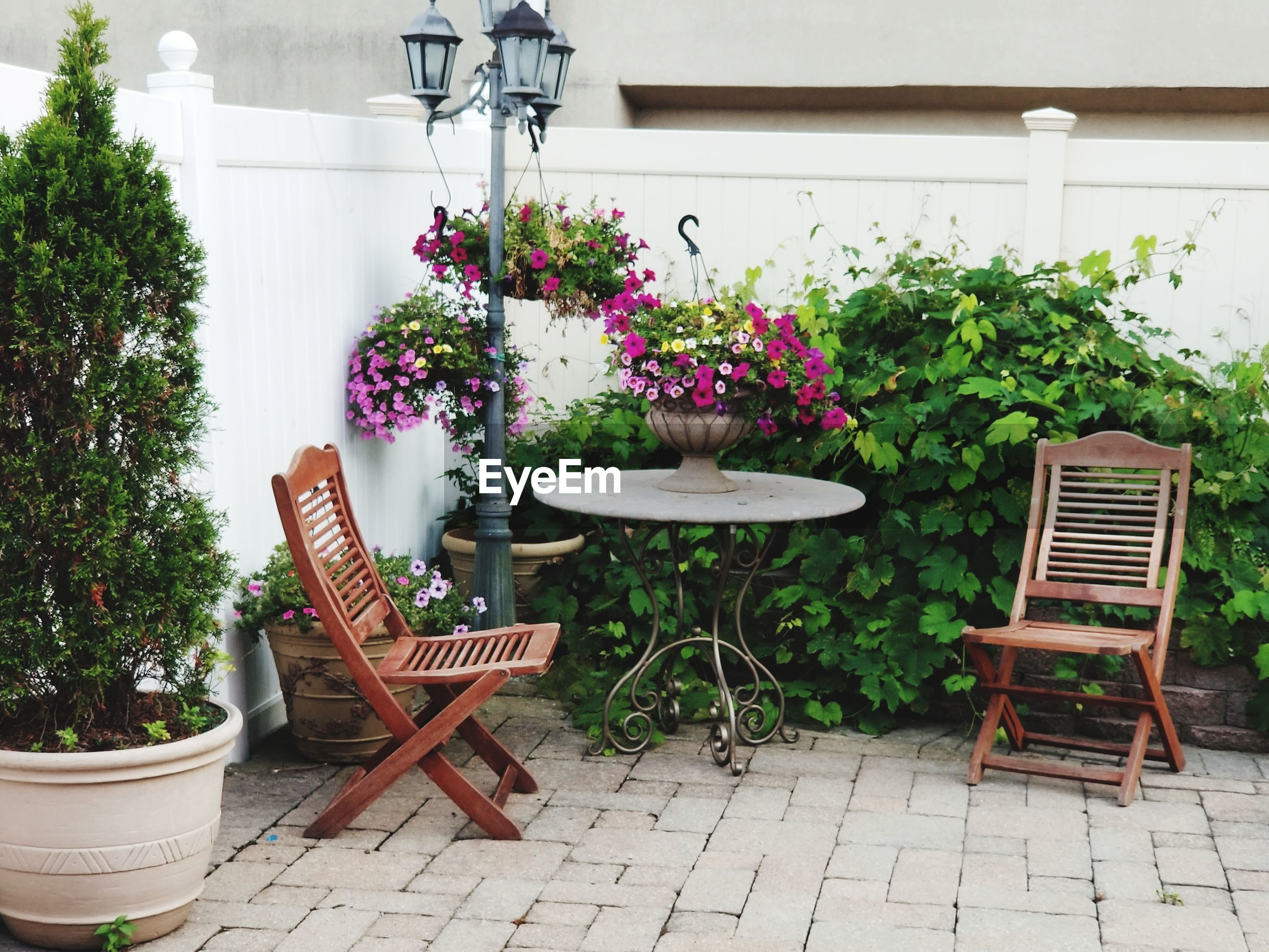 POTTED PLANT ON TABLE BY CHAIR AGAINST WALL