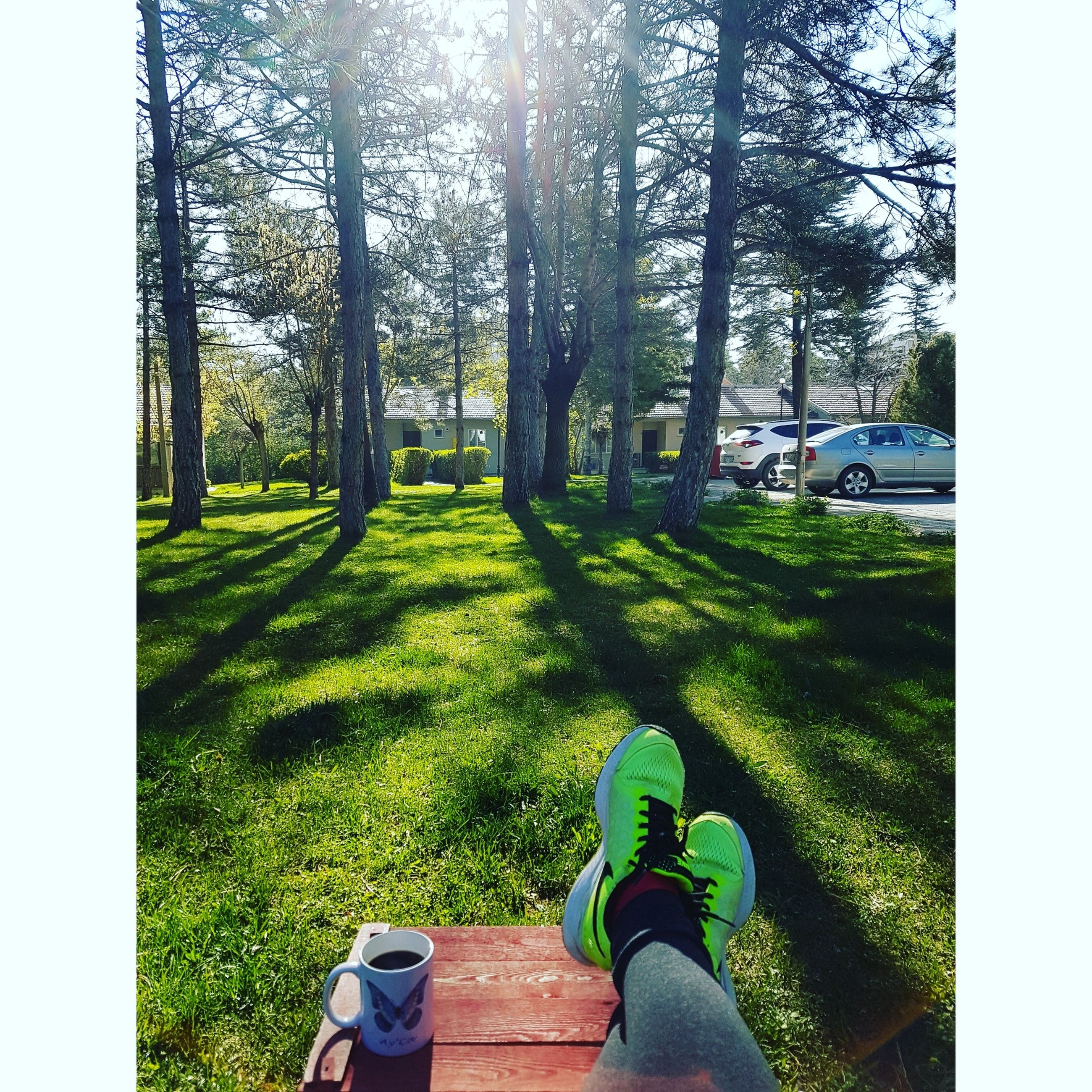 low section, human leg, grass, tree, personal perspective, real people, day, human body part, one person, shoe, outdoors, leisure activity, nature, men, lifestyles, beauty in nature, human hand, people