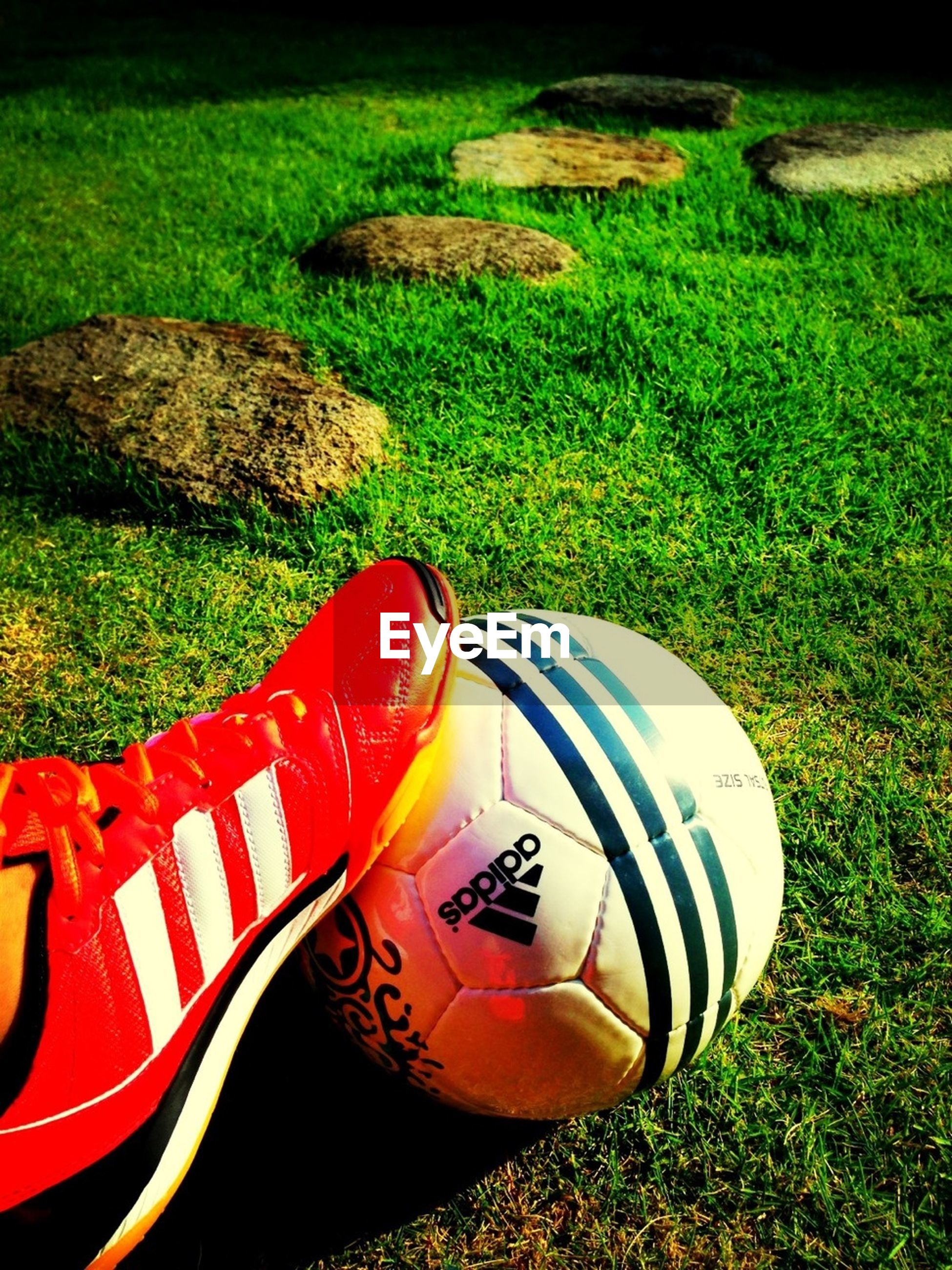 grass, field, grassy, red, shoe, high angle view, close-up, transportation, sport, lawn, green color, sunlight, day, outdoors, no people, park - man made space, toy, absence, footwear, playground