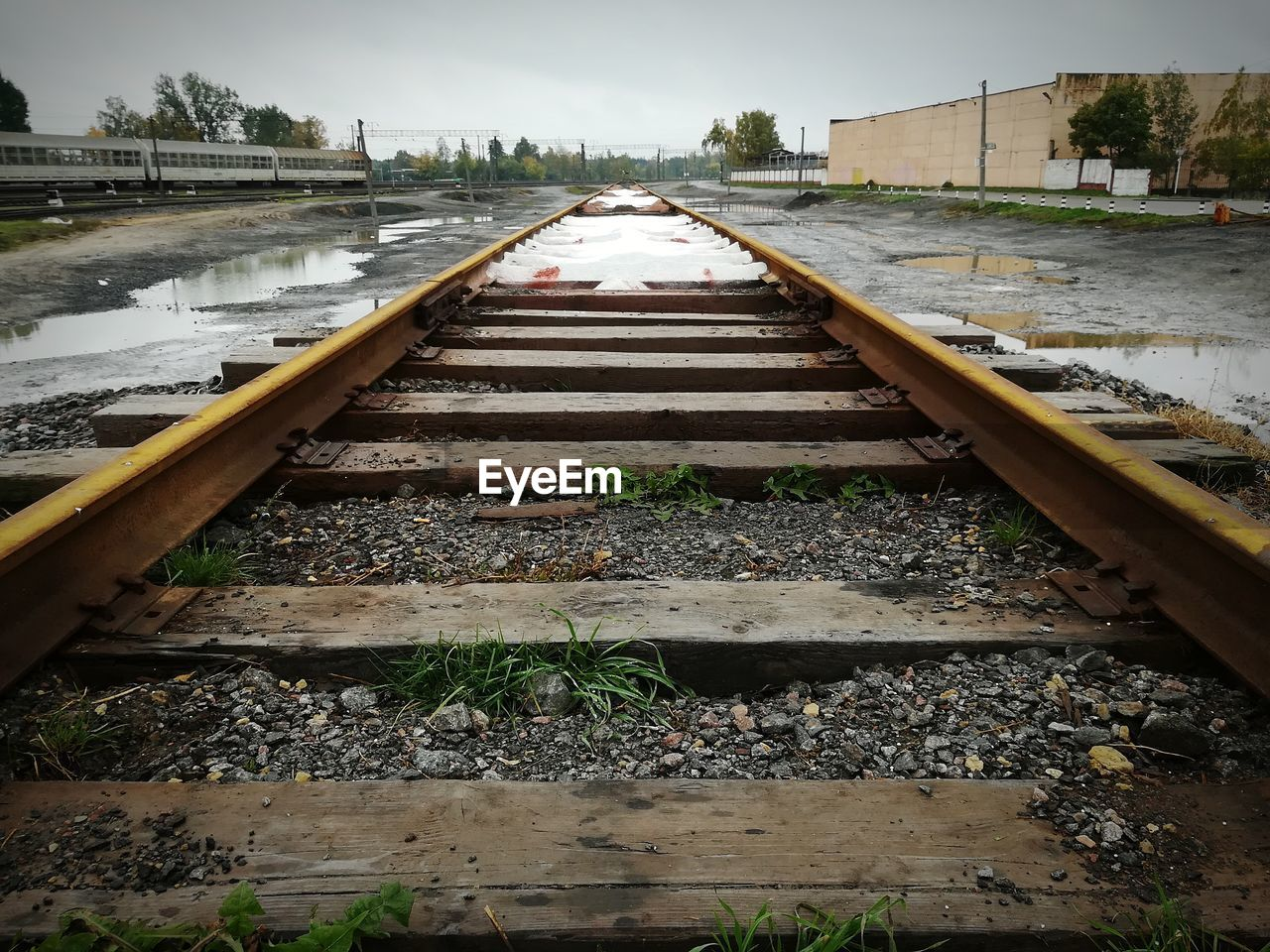 railroad track, rail transportation, outdoors, railroad tie, no people, nature, day, the way forward, plant, growth, water, tree, sky