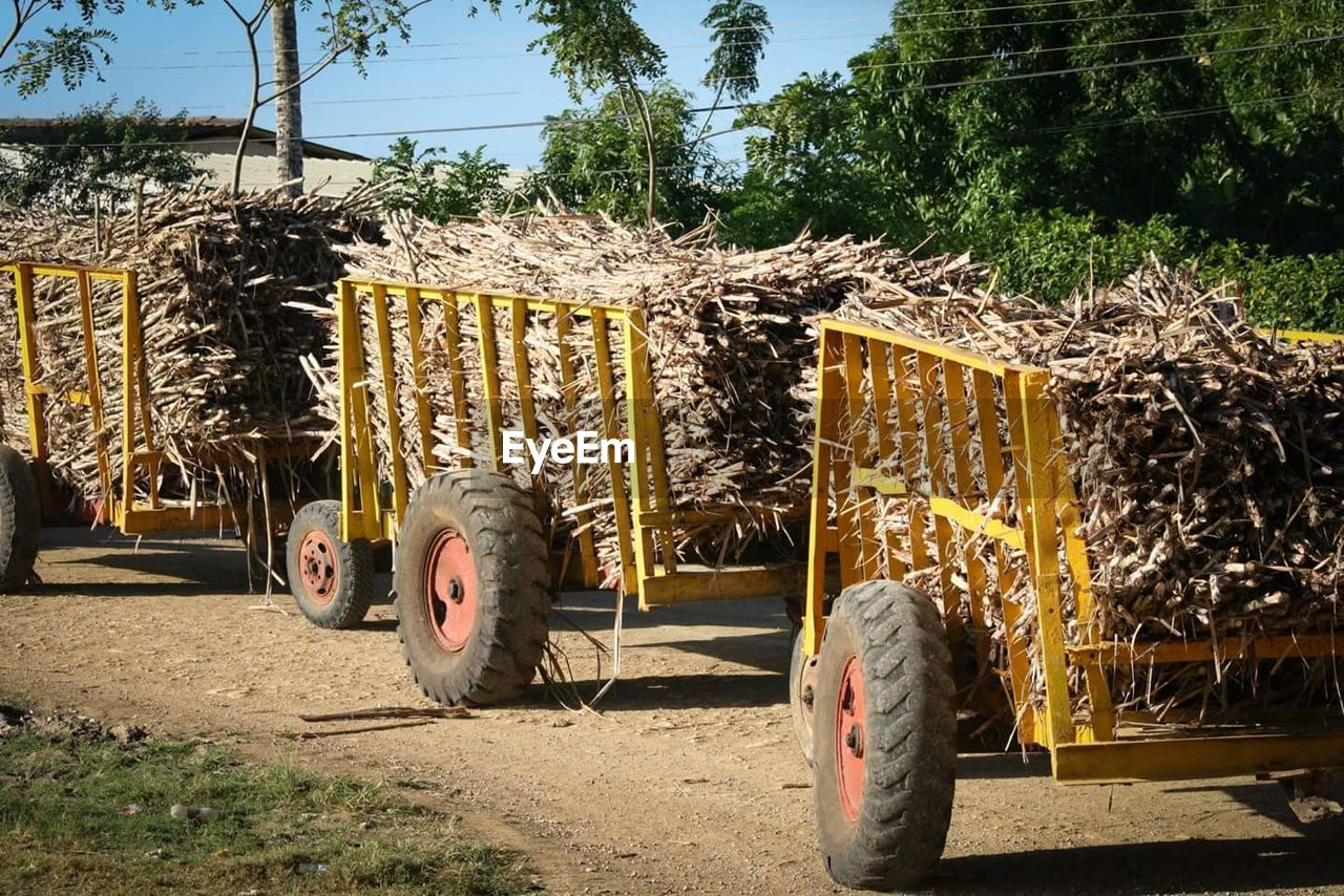 Heap Of Crops On Carts At Dirt Road