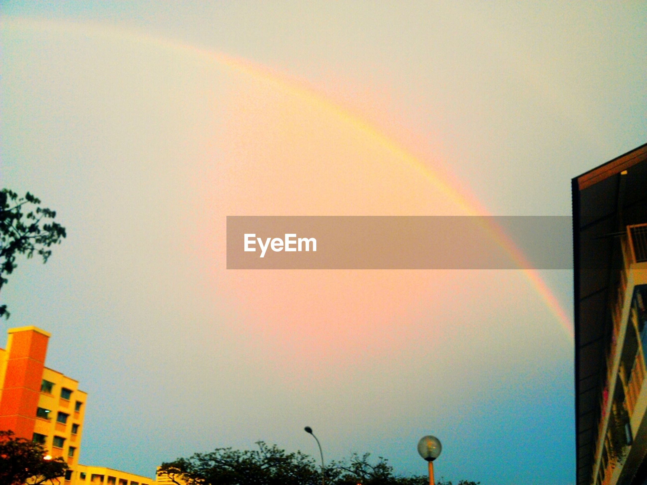 building exterior, architecture, built structure, rainbow, low angle view, sky, sunset, multi colored, tree, high section, city, nature, outdoors, beauty in nature, building, cloud - sky, copy space, scenics, no people, dusk
