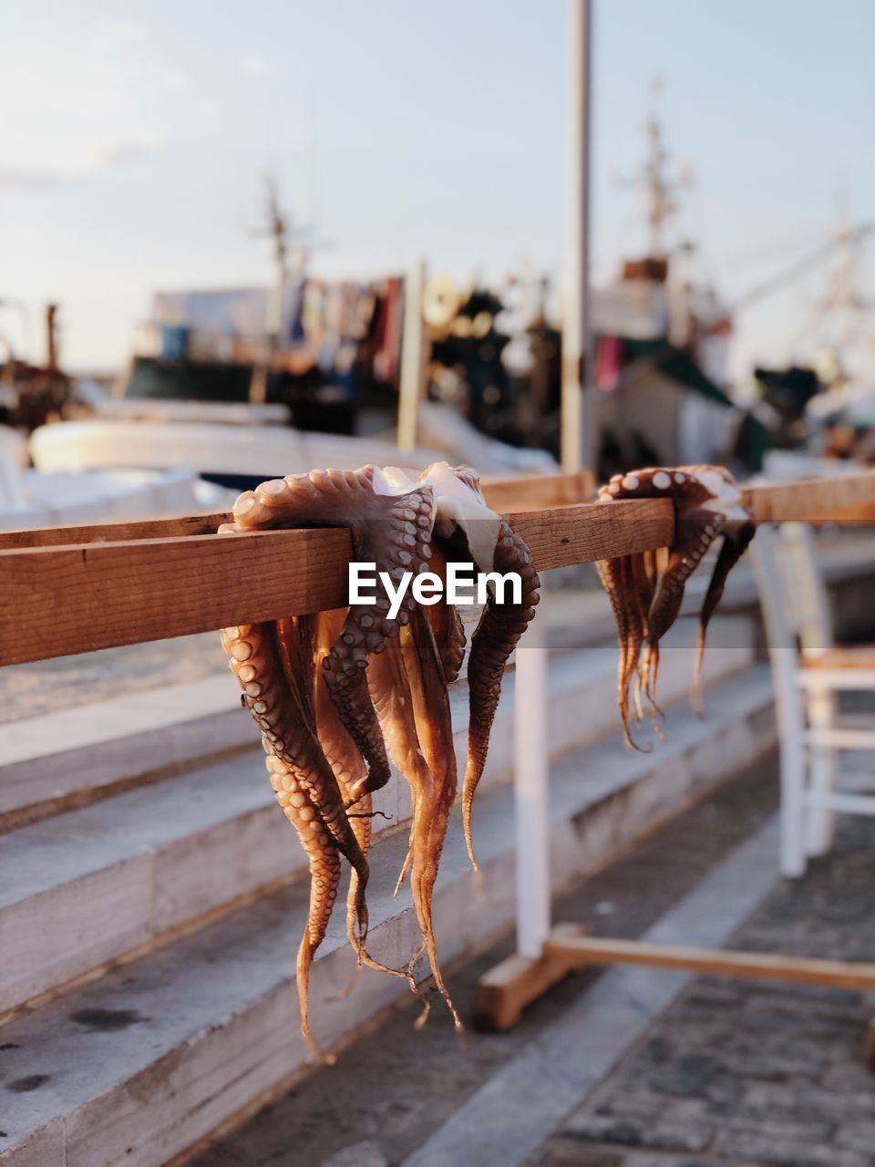 Close-up of octopus hanging on railing against sky