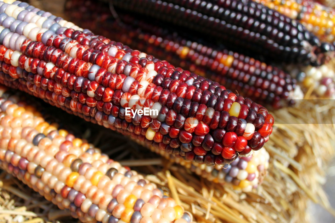 High Angle View Of Bloody Butcher Corns At Market Stall