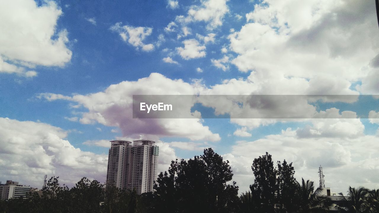 sky, tree, architecture, cloud - sky, skyscraper, growth, city, no people, building exterior, outdoors, cityscape, day