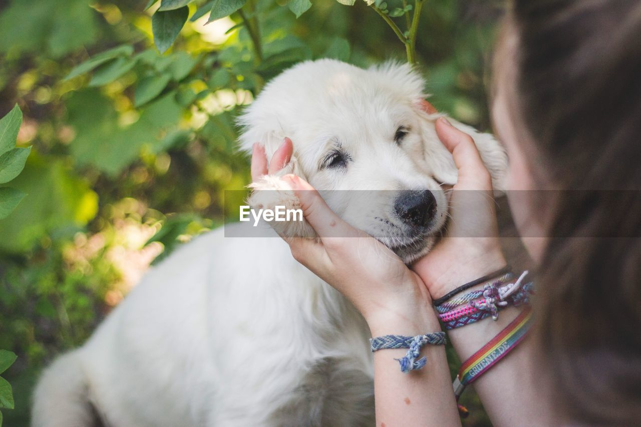 Close-Up Of Teenage Girl Pampering Dog On Field