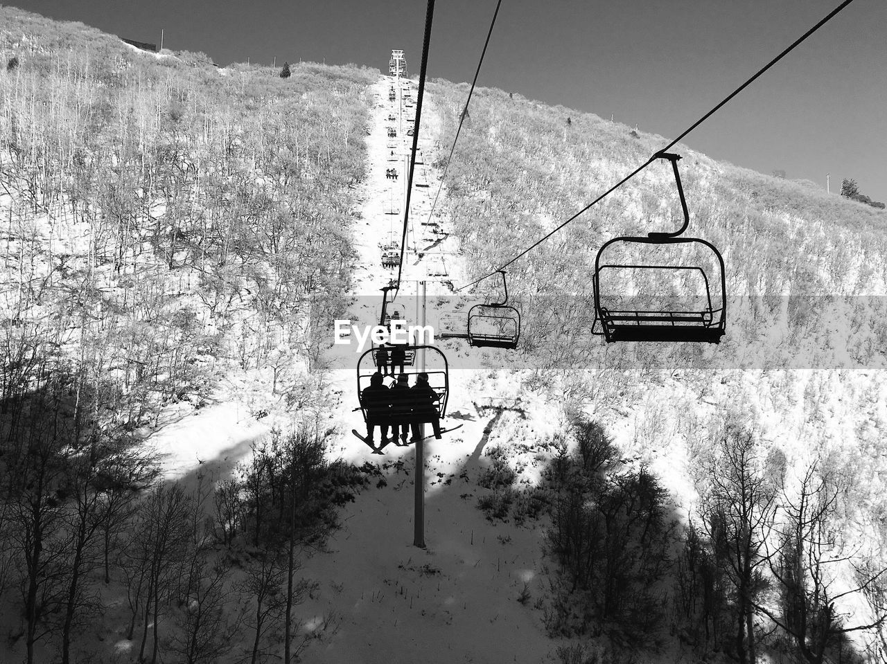 cable car, overhead cable car, ski lift, tree, transportation, plant, mode of transportation, nature, cable, day, mountain, snow, outdoors, cold temperature, beauty in nature, travel, sky, real people, land