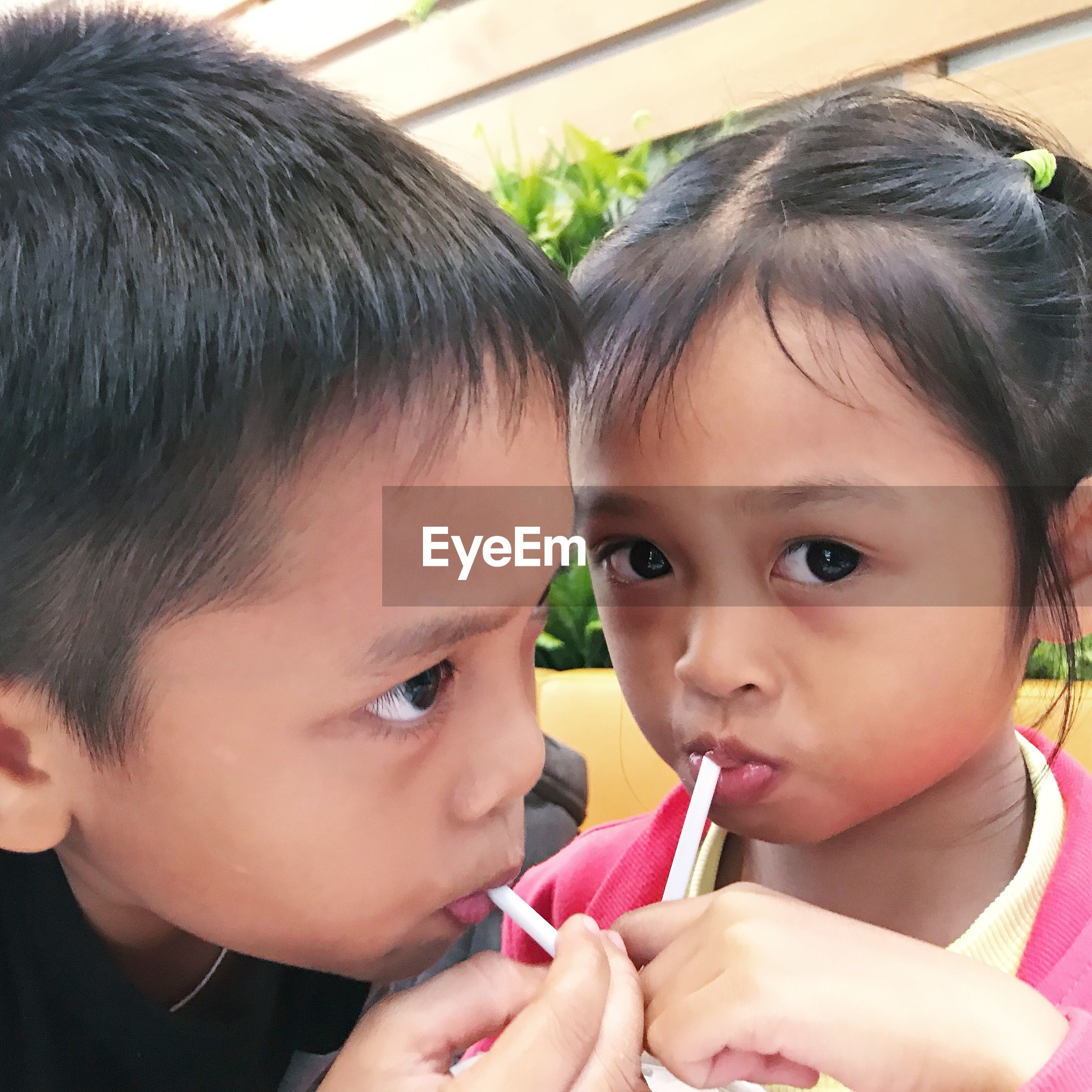 Close-up portrait of girl with brother sipping drink