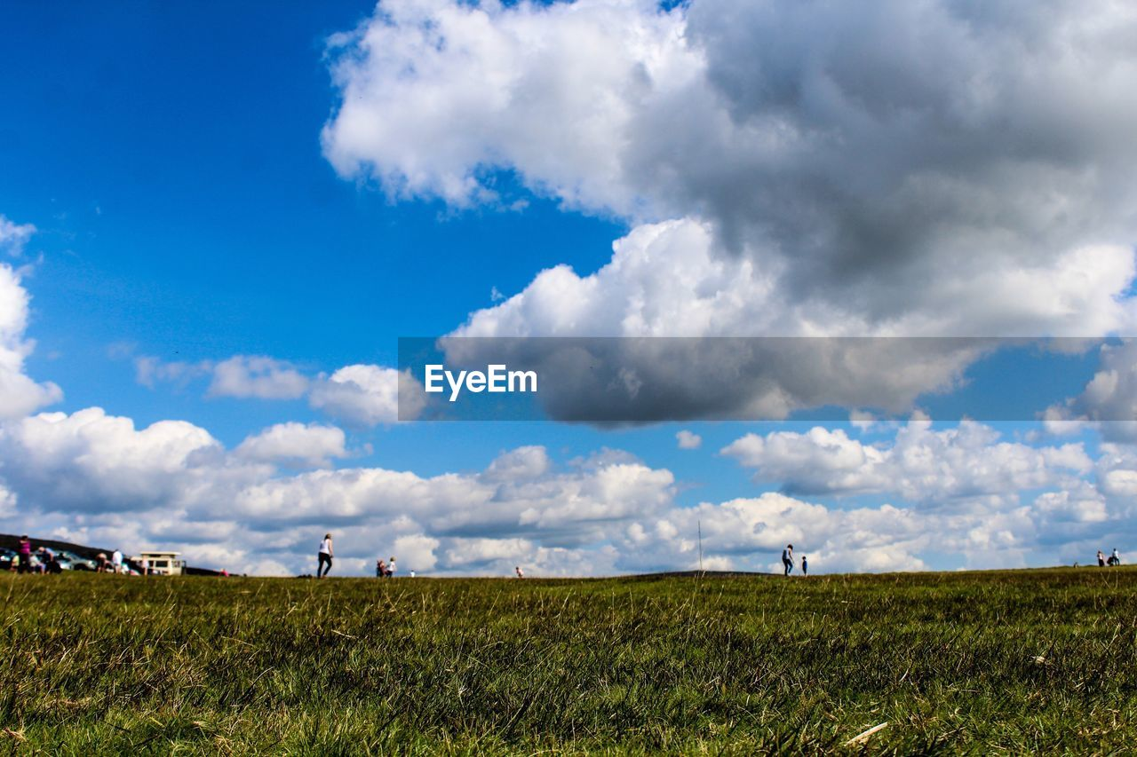 sky, cloud - sky, field, grass, nature, landscape, beauty in nature, day, tranquil scene, tranquility, scenics, outdoors, growth, blue, agriculture, rural scene, no people