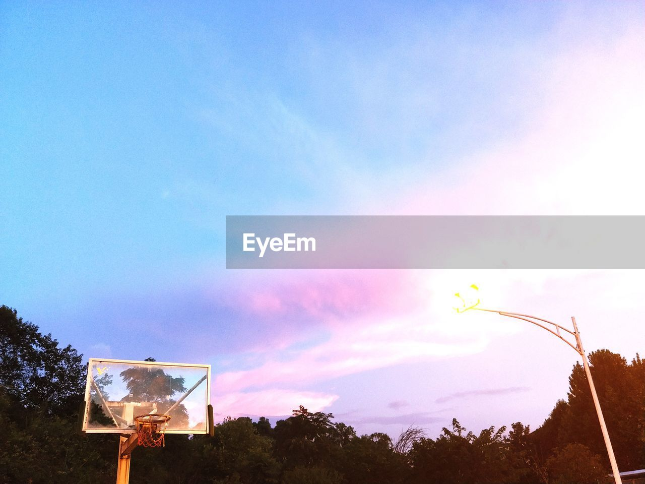 sky, tree, nature, basketball hoop, low angle view, outdoors, sunset, no people, beauty in nature, day, basketball - sport