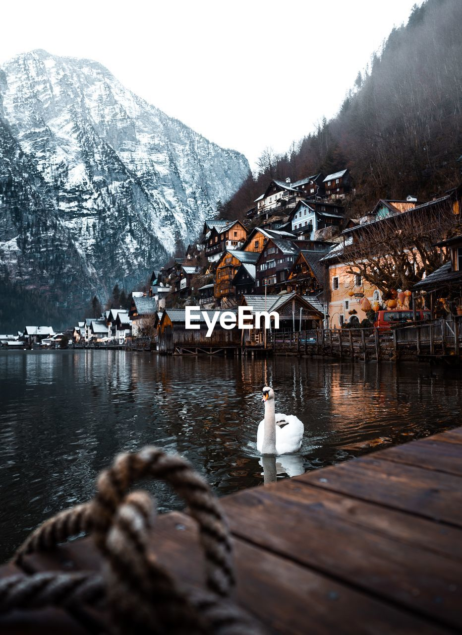 water, architecture, mountain, built structure, winter, cold temperature, nature, building exterior, bird, animals in the wild, vertebrate, beauty in nature, animal themes, snow, lake, day, animal, scenics - nature, no people, outdoors, snowcapped mountain