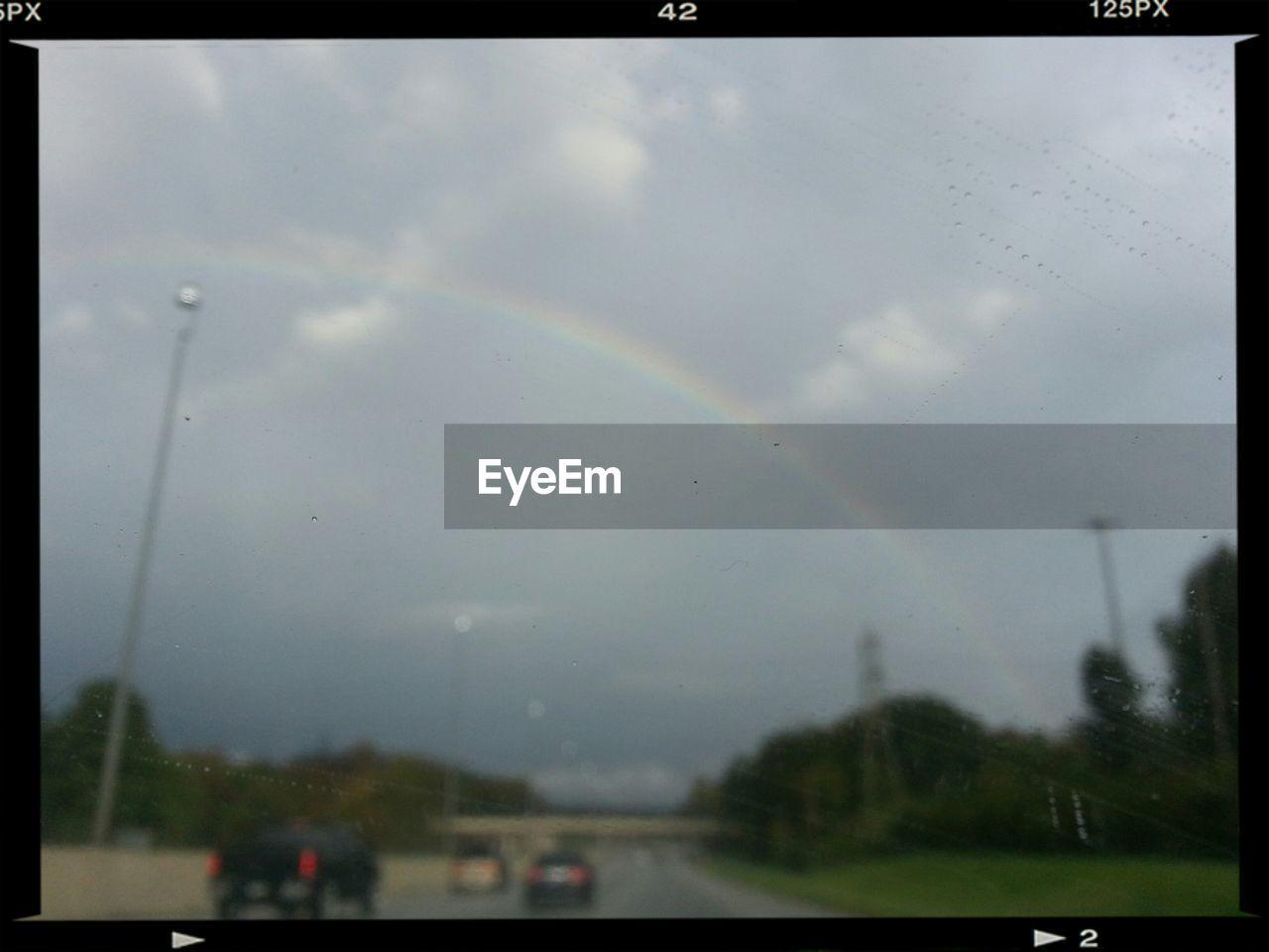rainbow, rain, double rainbow, weather, nature, no people, wet, day, tree, sky, outdoors, raindrop, beauty in nature, scenics, close-up