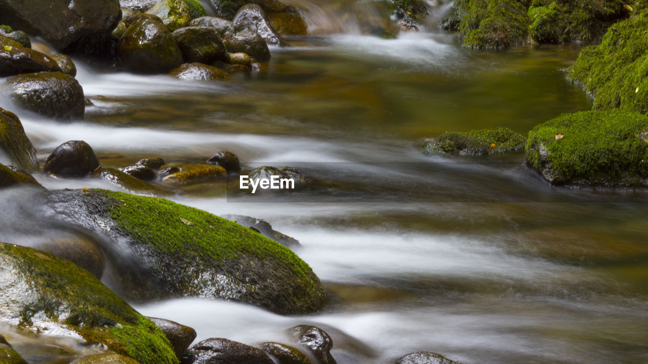 water, motion, scenics - nature, rock, blurred motion, long exposure, solid, rock - object, beauty in nature, no people, flowing water, nature, tree, plant, day, moss, river, forest, waterfall, flowing, outdoors, stream - flowing water, power in nature