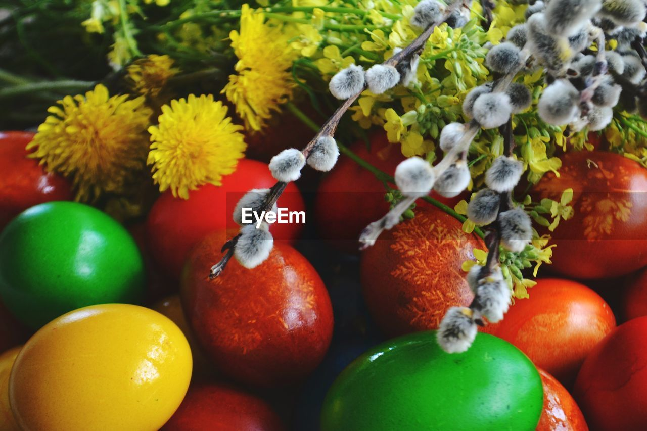 food, food and drink, healthy eating, fruit, freshness, wellbeing, red, no people, plant, close-up, berry fruit, still life, nature, flower, tomato, day, orange color, focus on foreground, green color, ripe