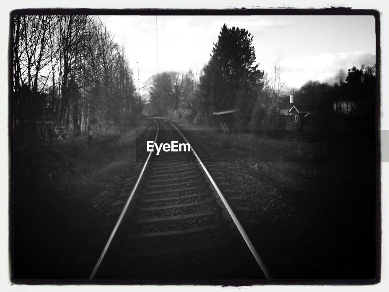 transportation, railroad track, tree, no people, rail transportation, outdoors, the way forward, day, sky, nature, bare tree
