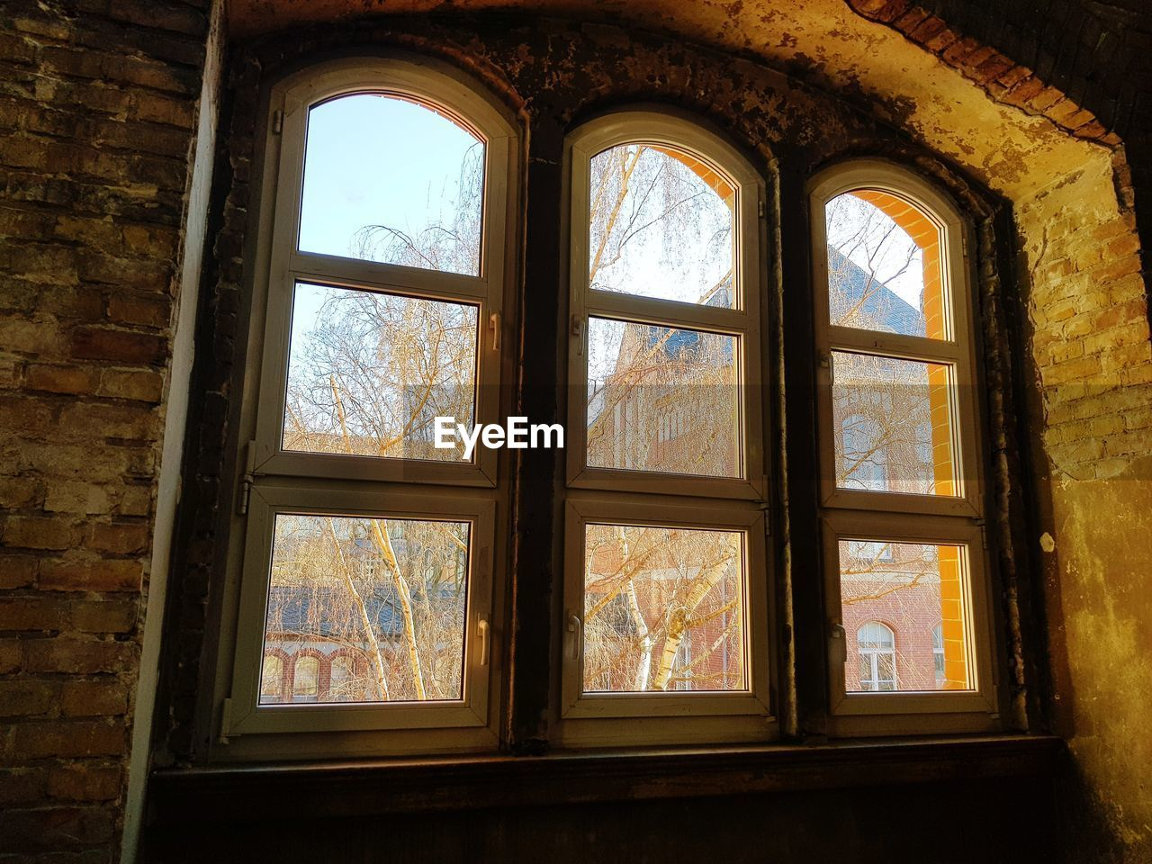 window, glass - material, indoors, transparent, architecture, day, no people, built structure, building, wall, wall - building feature, sunlight, glass, arch, brick wall, old, brick, nature, geometric shape, window frame