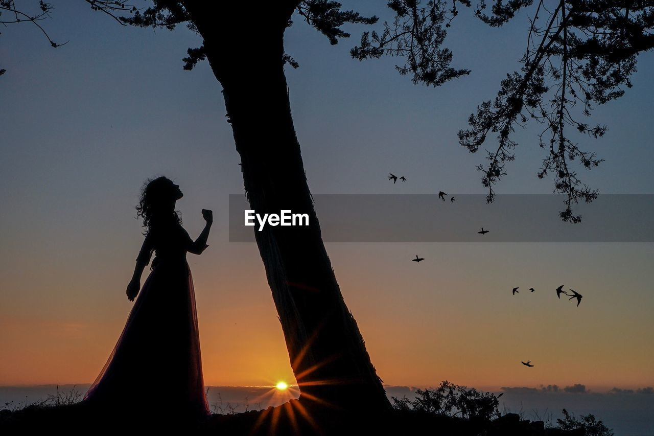 Silhouette woman standing by tree during sunset