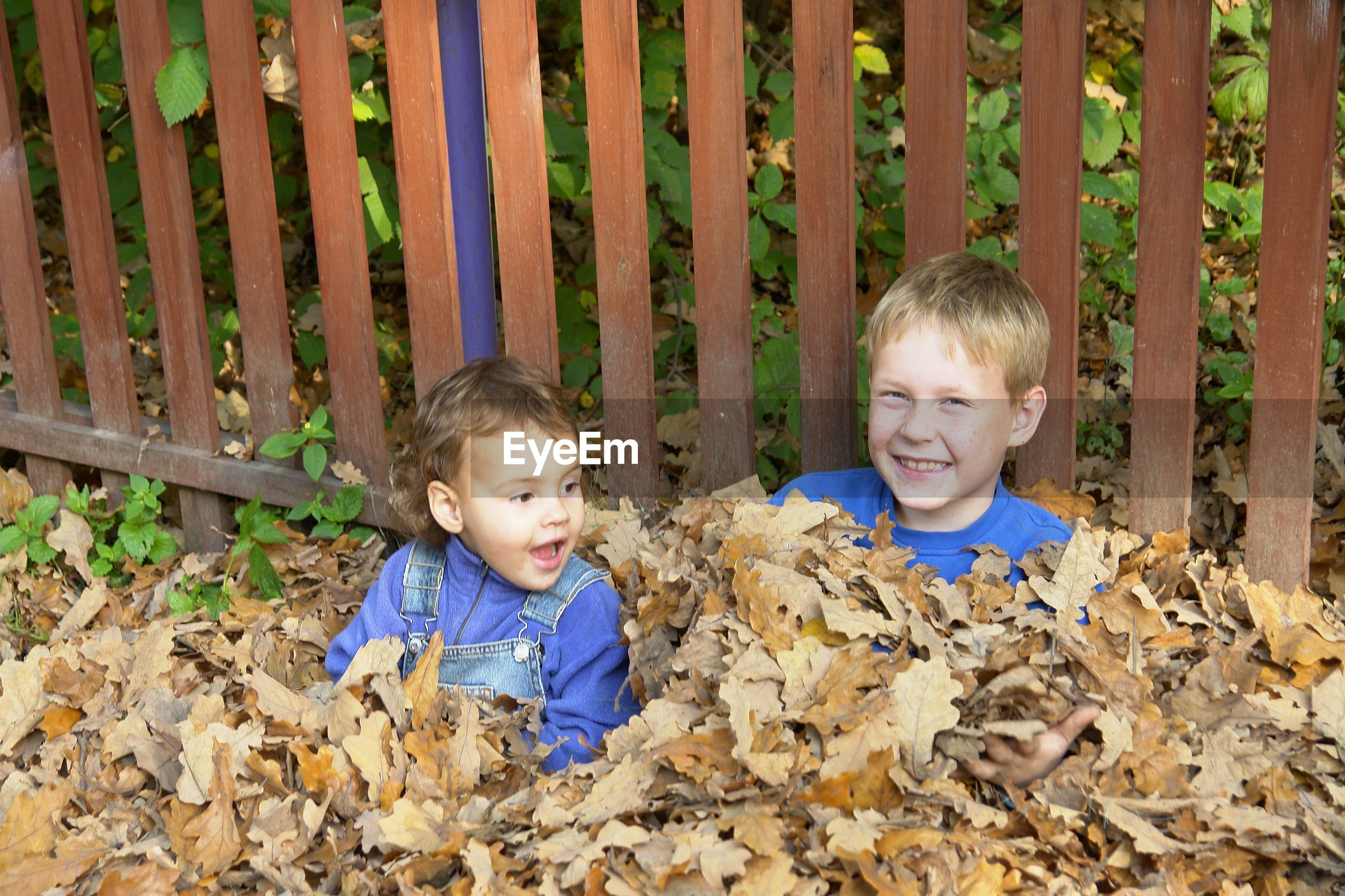Portrait of happy boy with brother sitting amidst autumn leaves