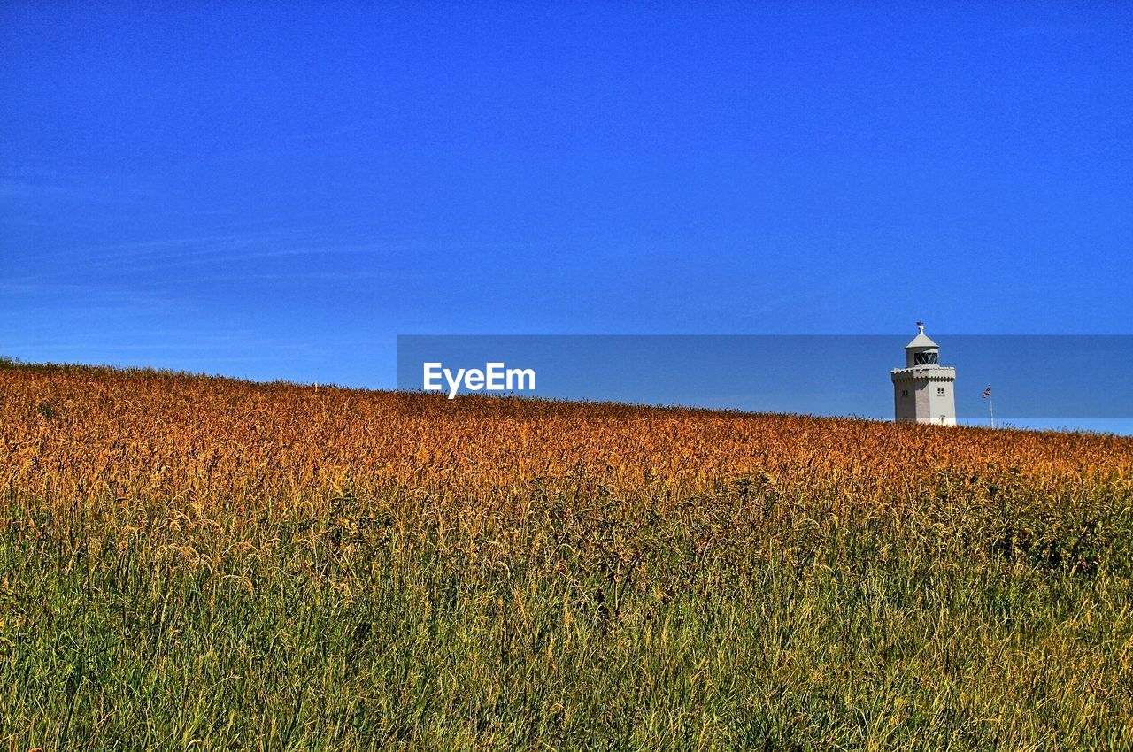 lighthouse, field, copy space, nature, grass, architecture, tranquility, built structure, tranquil scene, direction, guidance, building exterior, no people, day, beauty in nature, landscape, growth, scenics, clear sky, outdoors, blue, sky
