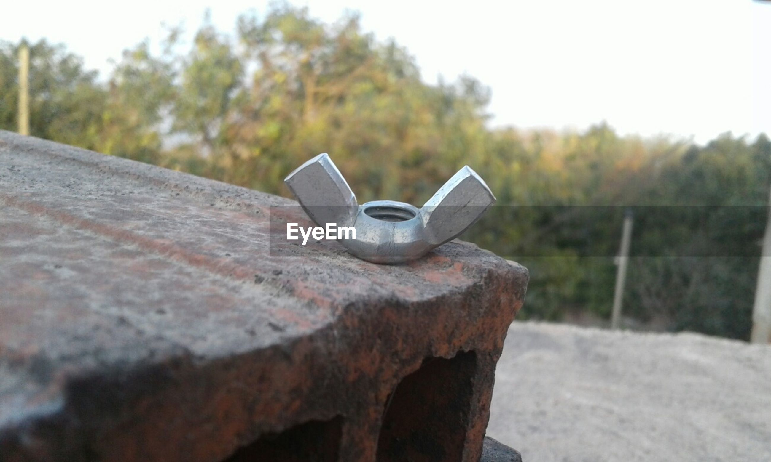 metal, day, no people, outdoors, focus on foreground, tree, close-up, retaining wall, nature, sky