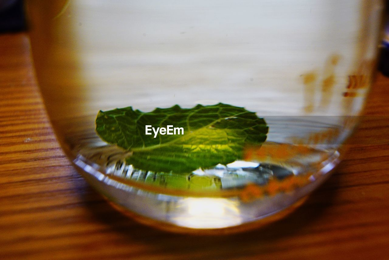 table, leaf, indoors, food and drink, close-up, freshness, no people, food, day, nature